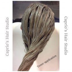 Toner Appilcation for Blonde Hair